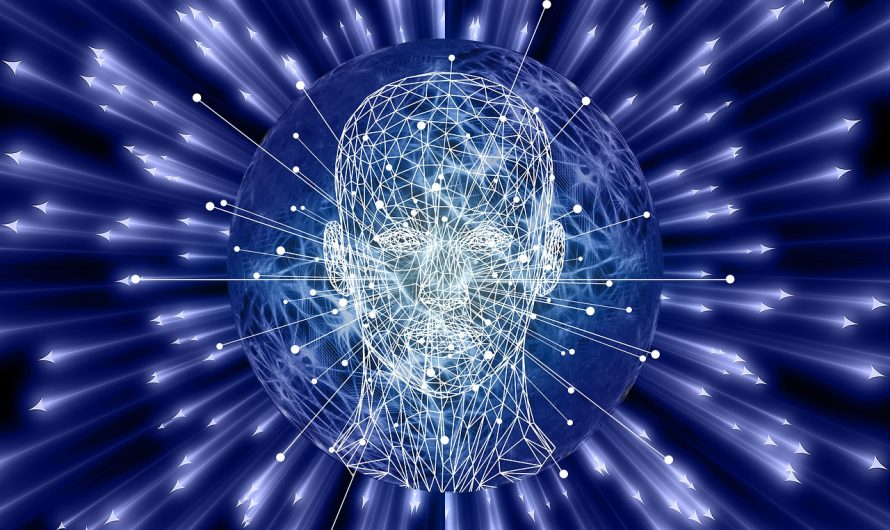 Sposoby Na IQ – Jak Ćwiczyć I Rozwijać Inteligencję Mózgu