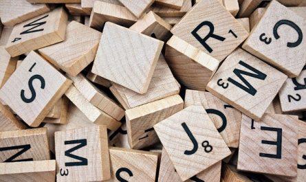 zagadki słowne